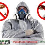 shows Maximum Pest Control Services professional pest control technician a wearing mask