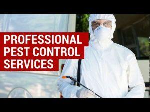 Pest Control Service 905-330-2102
