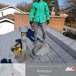 Pest Control Professional on a roof of a property in Burlington Ontario