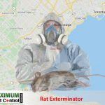 map of Ontario Oakville and dead rat lying down next to rat exterminator