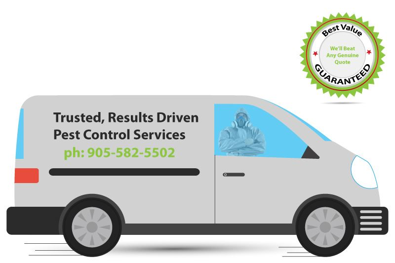 pest control van vehicle illustration and best value guarantee offer
