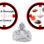 safe and thorough pest control