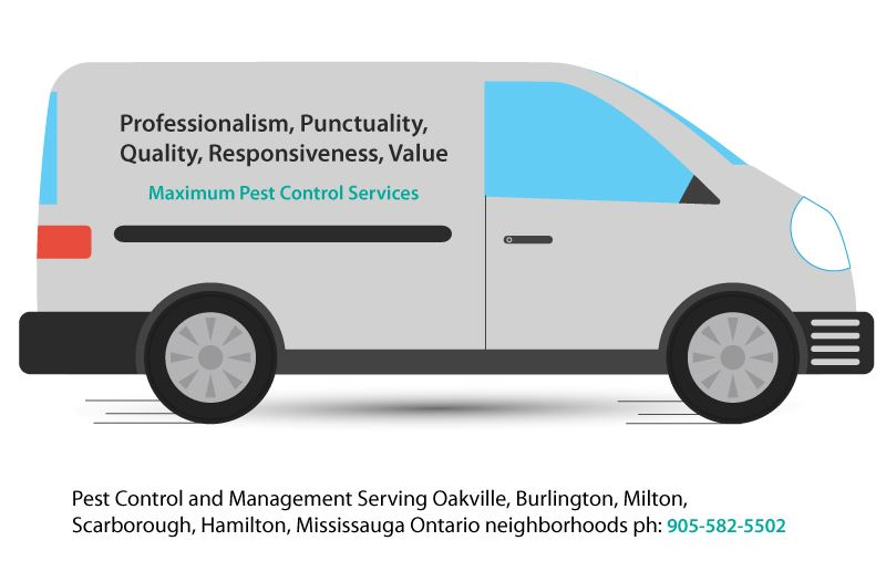 pest control and management vehicle illustration