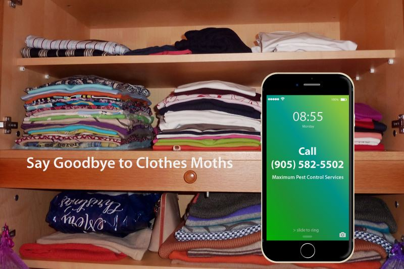 stacked clothes folded inside a wardrobe and mobile phone illustration