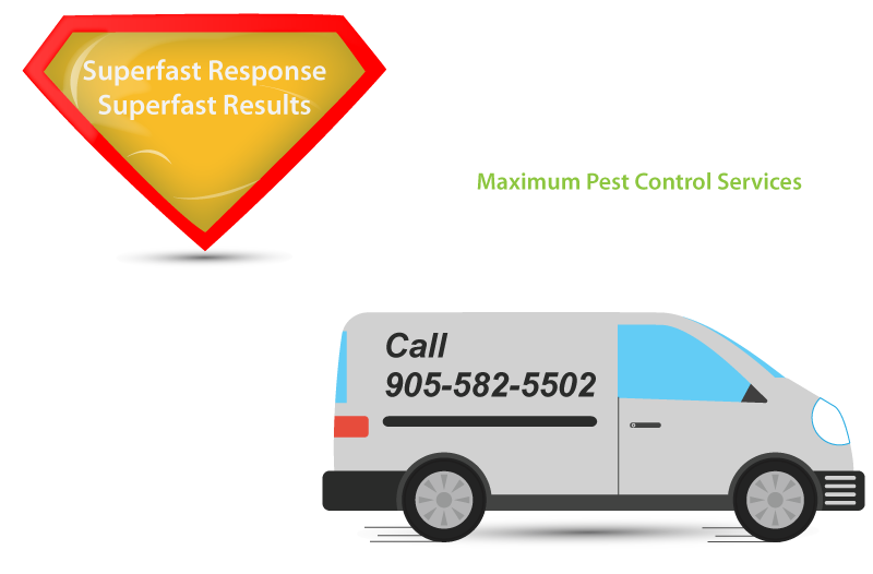 superfast response superfast results pest control van